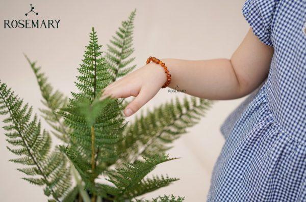 vòng tay hổ phách baltic màu cognac cho trẻ em